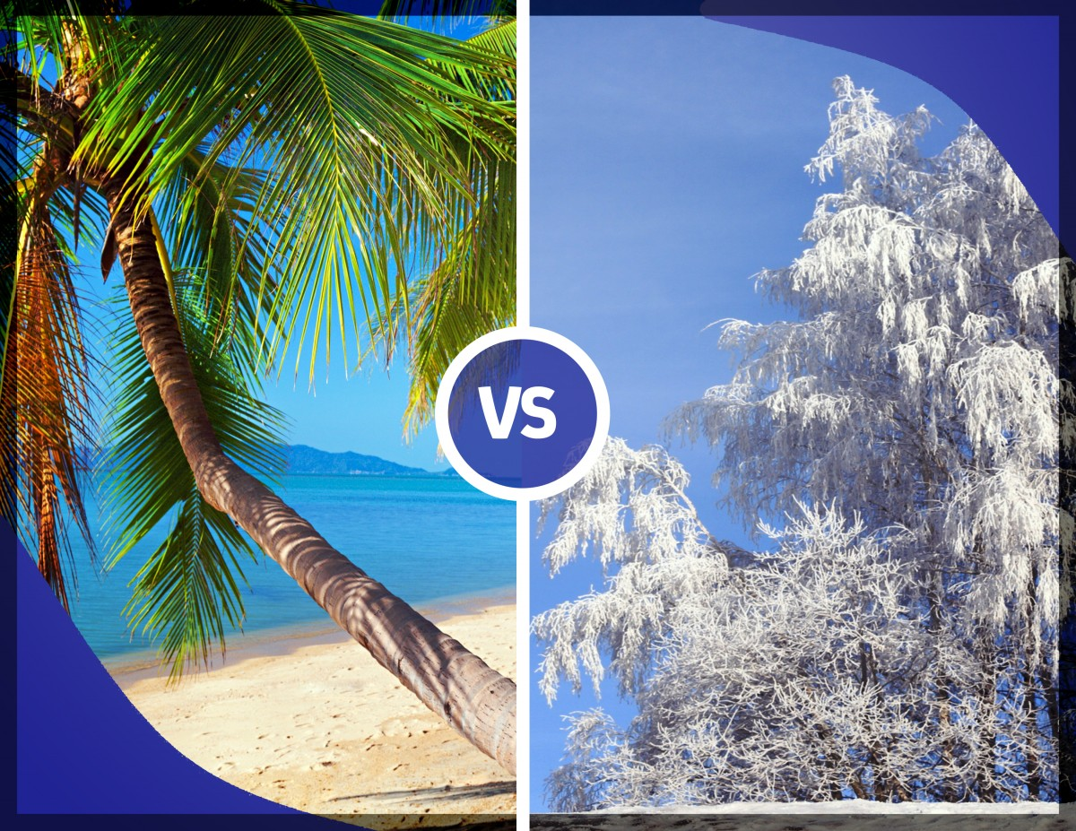 Summer vs winter the debate vacation quest blog for Best vacations to take in february